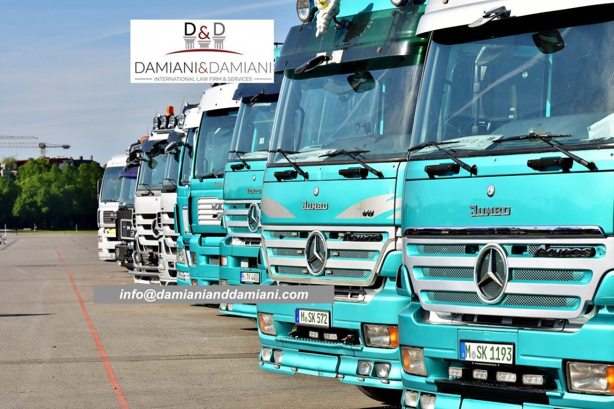 International carriage of goods by road. Main elements and concerns